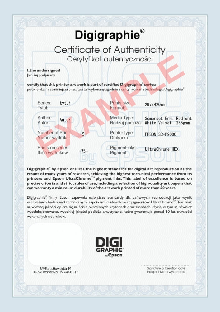 certificate digigraphie example